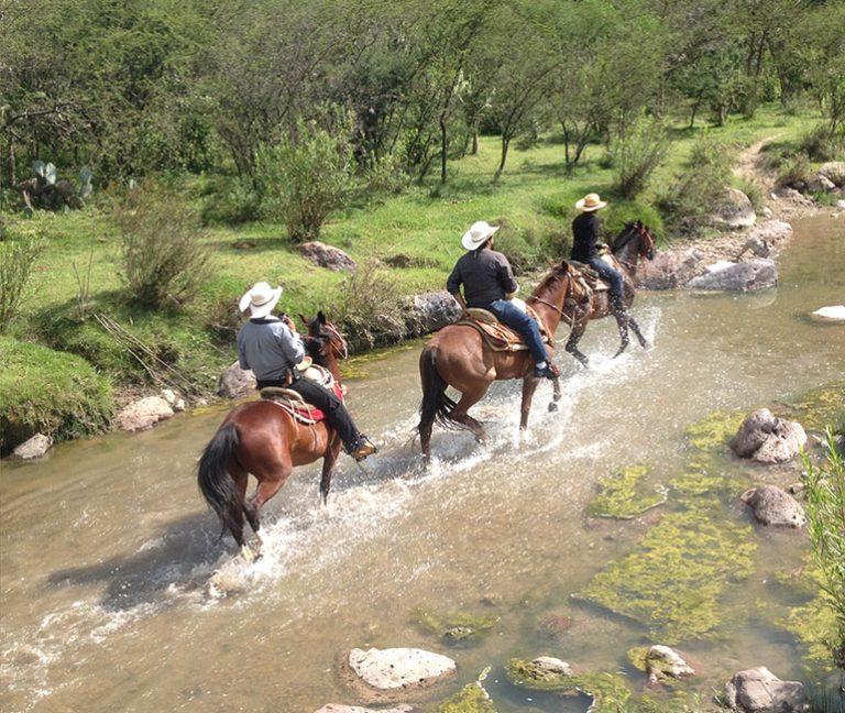 Activities San Miguel
